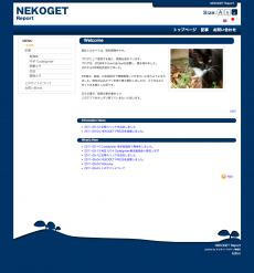 NEKOGET Report Design